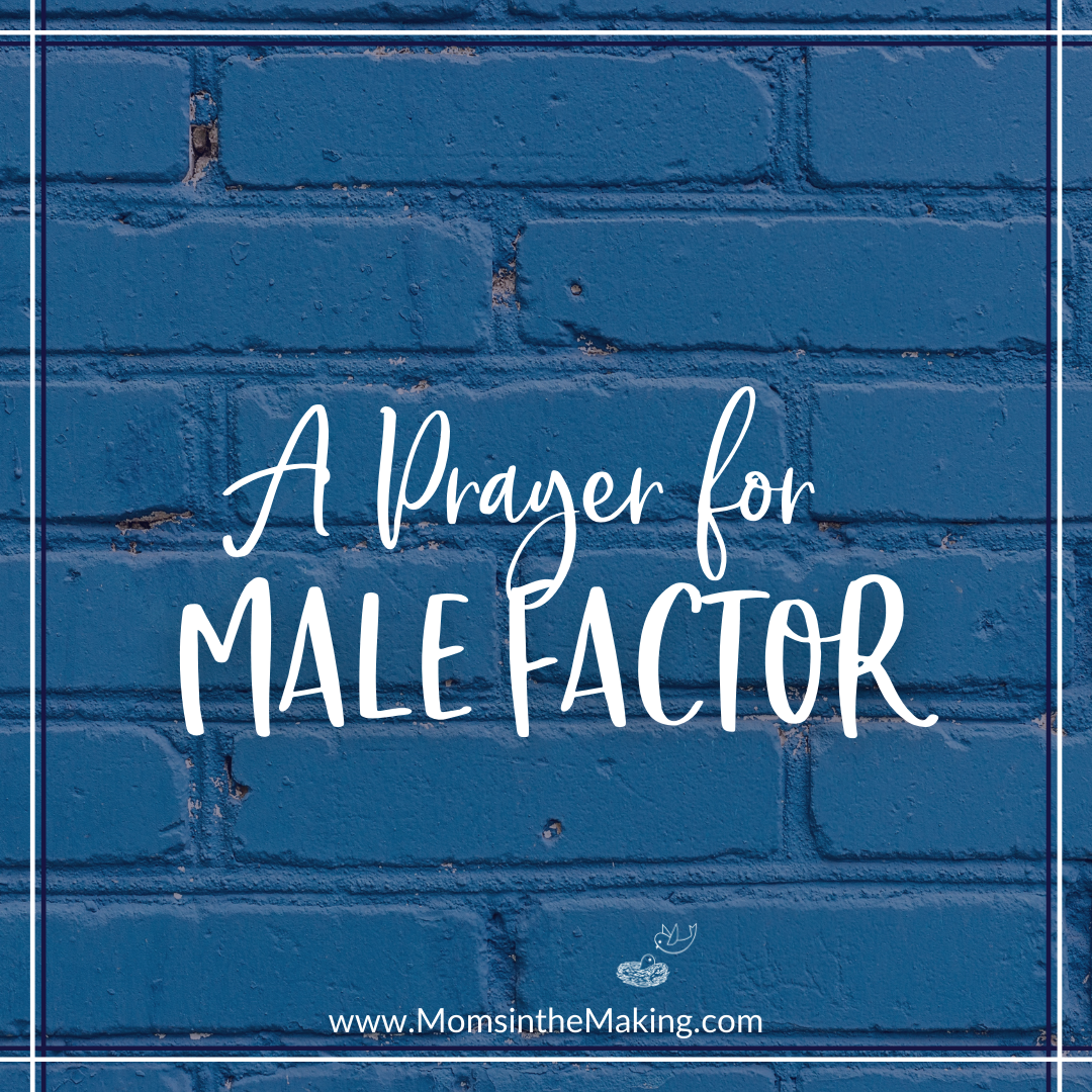 a prayer for male factor infertility